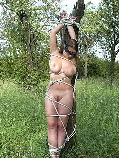 Tied to tree naked