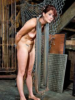 Pity, that Girl in stocks nude please where