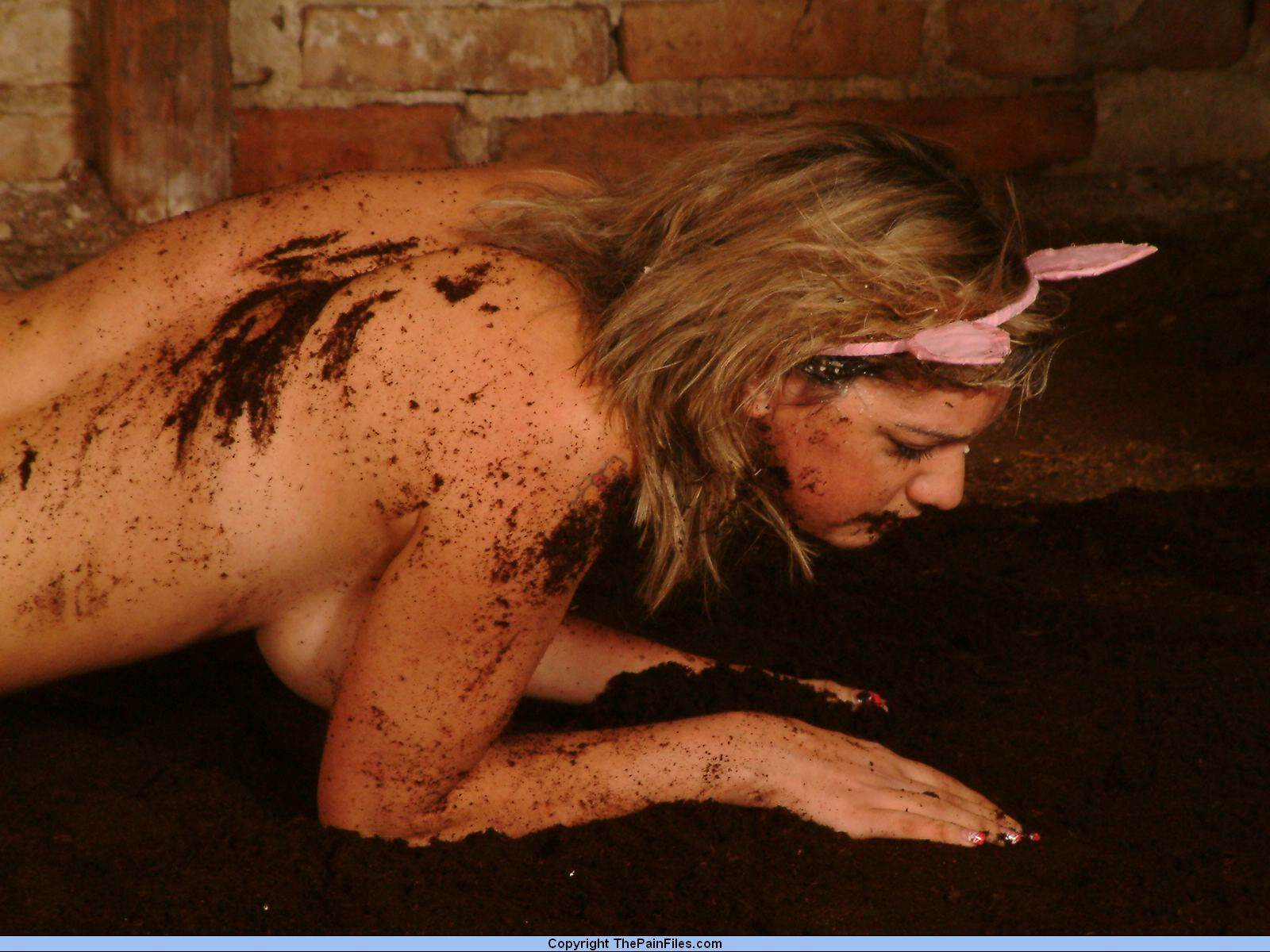 Fuck female pig galerie sexy pictures