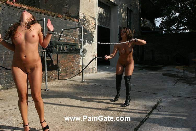 Nude bullwhipping