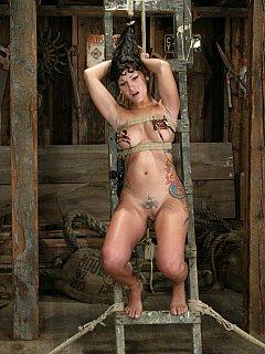 Betty b porn galleries