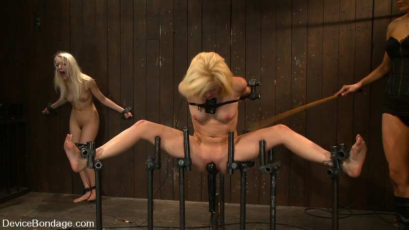 Torture porn