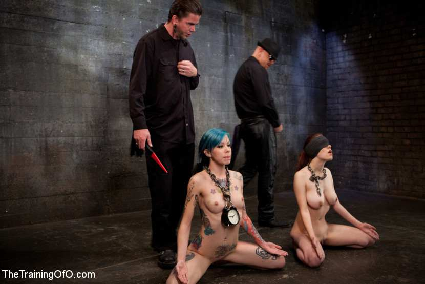 bdsm-the-training-of-onlayn