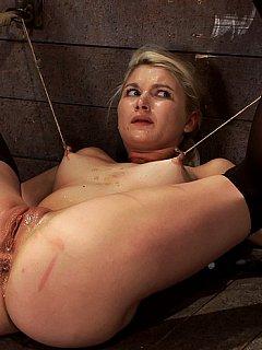Cynthia boyd pornstar