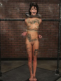 Skinny tattoed bitch tastes some evrteme bondage
